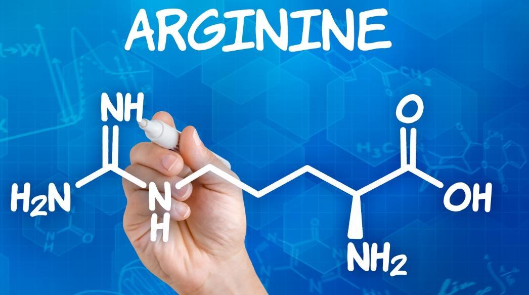 аргинин для женщин