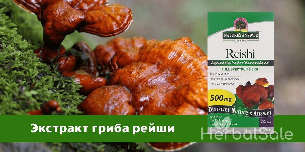 свойства гриба рейши iHerb