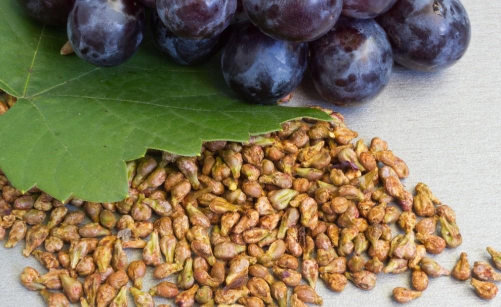 экстракт виноградных косточек для лица