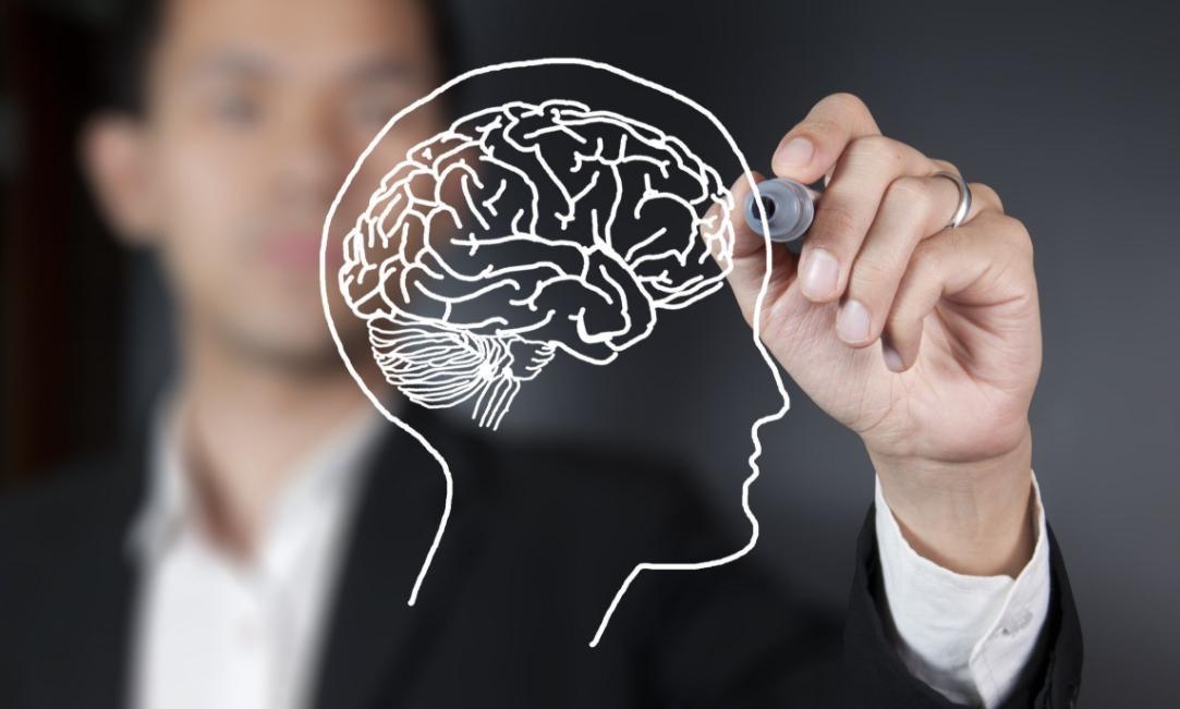 витамины dmae для мозга