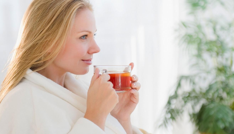 травяной чай из дягиля