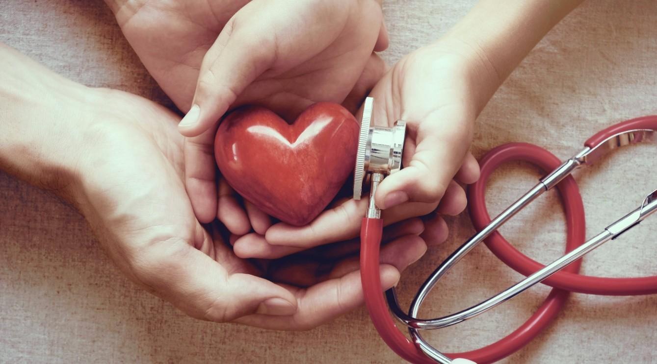 арджуна для правильной работы сердца