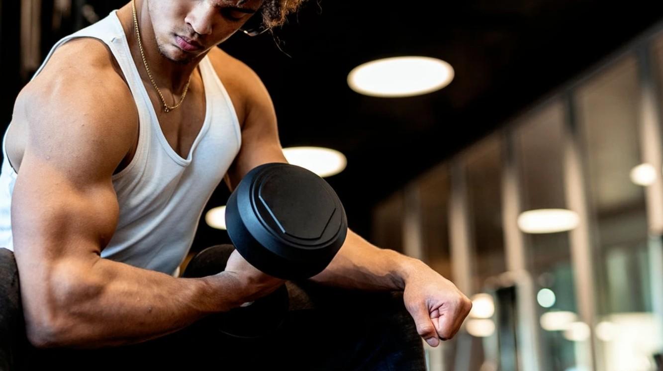 тестостерон стимулирует рост мышц
